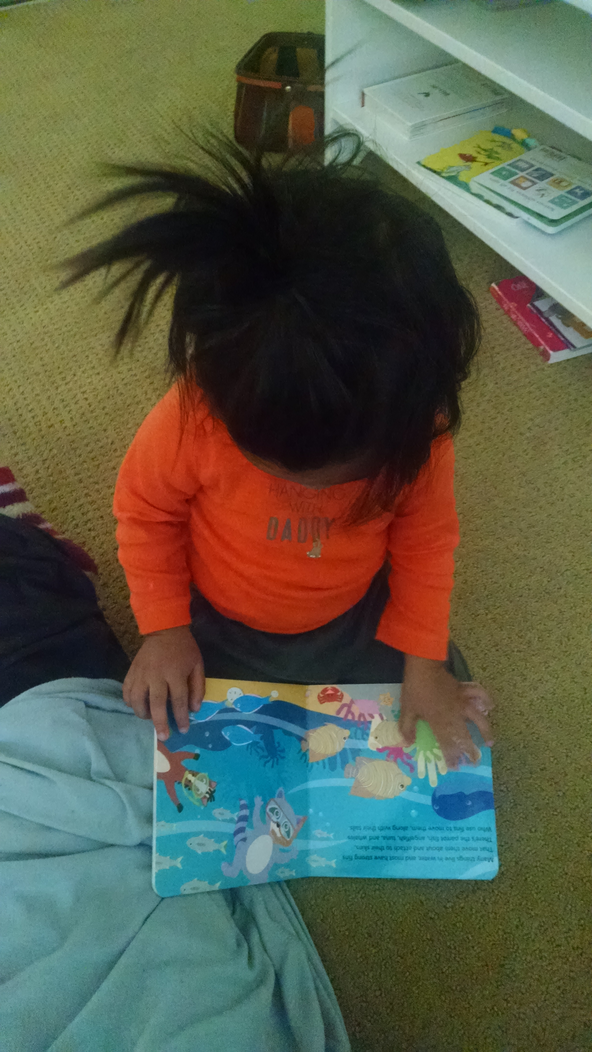 Montessori Toddler Bedroom - Book Shelf