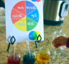 Gujarati Color Wheel -Montessori Inspired Holi Activity